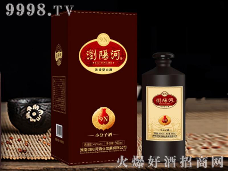 浏阳河酒9N小分子酒浓香型白酒【42°500ml】